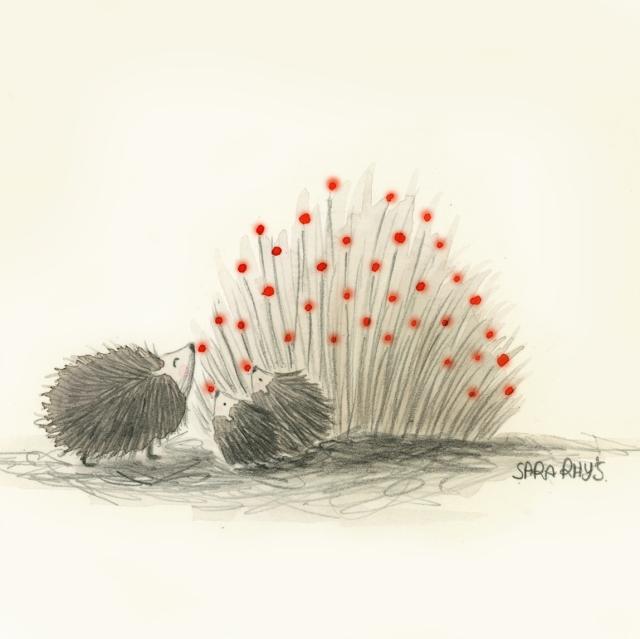cc hedgehogs